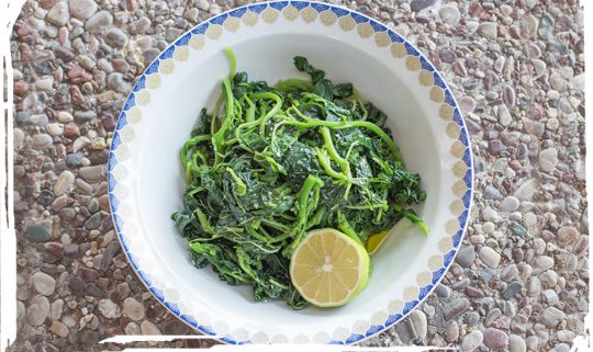 Boiled Greens